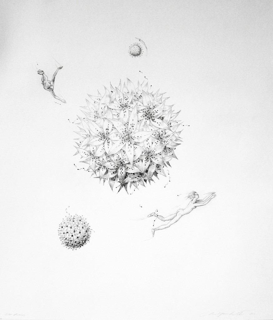Christopher Winter, Lilium Universum, 2011, 81x70 cm Bleistift/Papier