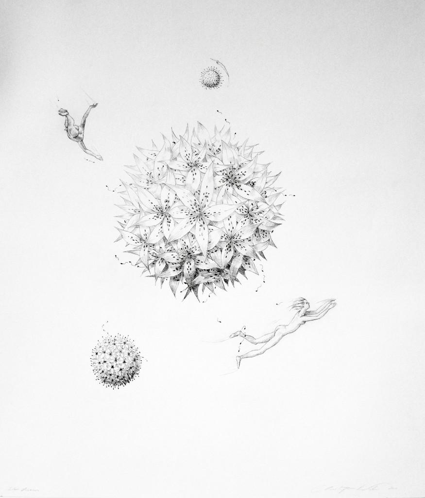 Christopher Winter, Lilium Universe, 2011, pencil/paper, 81x70cm
