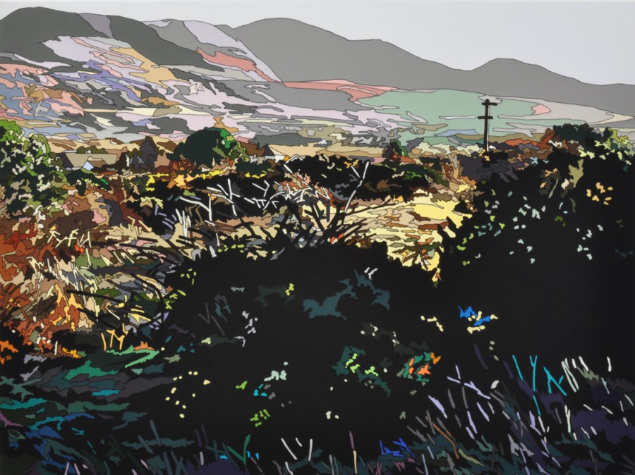 Rowena Dring, A little place by Loch Gill, 2011. stitched fabric on canvas, 110 x 150 cm